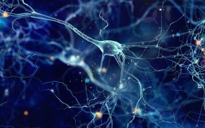 How to Recruit Genius Candidates: Appreciating Neurodiversity